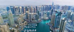 الاستثمار في فلل أو شقق للبيع في دبي: ما هو الخيار الأفضل؟